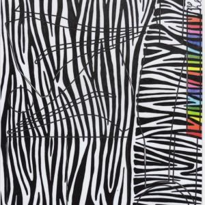 FRAM zebra